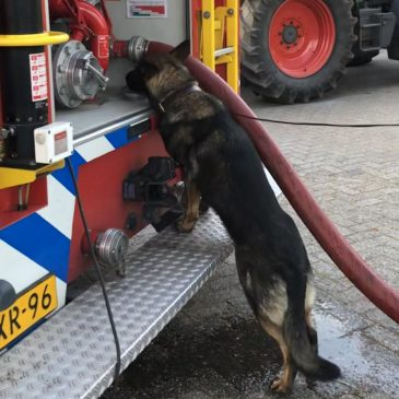 Training brandweer